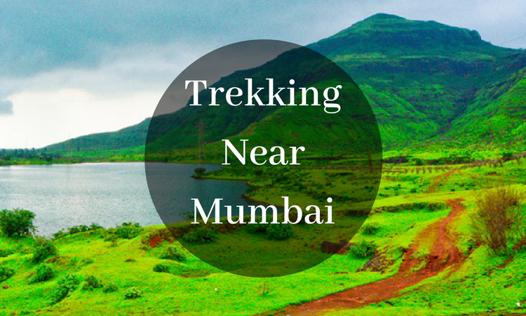 Top 10 Monsoon Trekking Places Near Mumbai