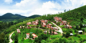 ooty-honeymoon-